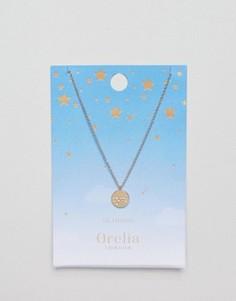 Ожерелье с подвеской-диском Скорпион Orelia - Золотой