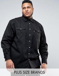 Черная джинсовая рубашка в стиле вестерн Duke PLUS - Черный