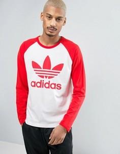 Красный лонгслив с логотипом-трилистником adidas Originals BK7623 - Красный