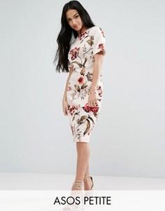 Платье-футболка миди с цветочным принтом ASOS PETITE - Мульти