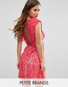Кружевное короткое приталенное платье Little Mistress Petite - Розовый