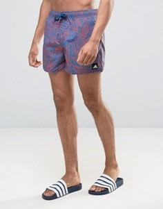 Короткие шорты для плавания с принтом в стиле 3-х adidas BJ8877 - Синий