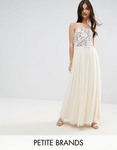 Платье макси с лифом-бандо и кружевной отделкой Little Mistress Petite - Бежевый