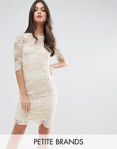 Платье с кружевом кроше Little Mistress Petite - Кремовый