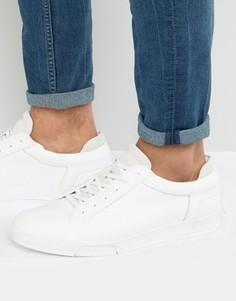 Кроссовки с отделкой под кожу змеи Calvin Klein Balin - Белый