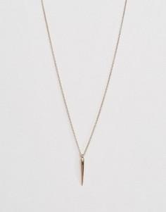 Позолоченное тонкое ожерелье с клыком Orelia - Золотой