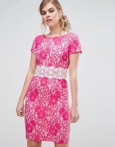 Кружевное платье-футляр с контрастной отделкой Paper Dolls - Розовый