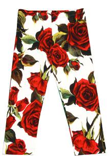 Брюки Dolce&Gabbana