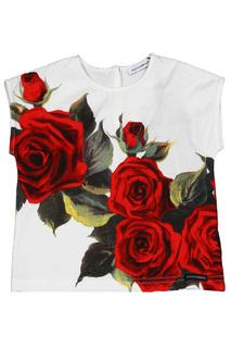 Топ Dolce&Gabbana