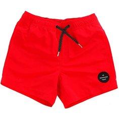 Шорты пляжные детские Quiksilver Everydaysolvy13 Quik Red