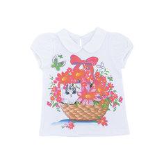 Блузка для девочки  Soni Kids