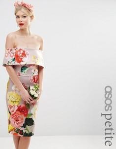Платье-футляр миди с открытыми плечами ASOS PETITE WEDDING - Мульти