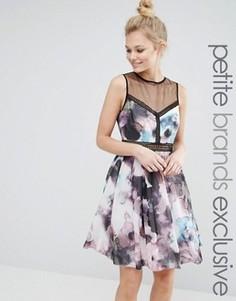 Короткое приталенное платье без рукавов Little Mistress Petite - Мульти