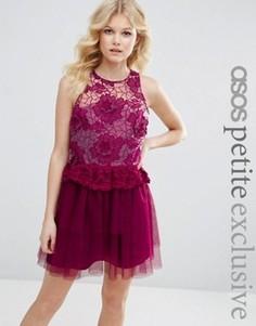 Платье для выпускного с вышивкой и 3D отделкой ASOS PETITE - Розовый