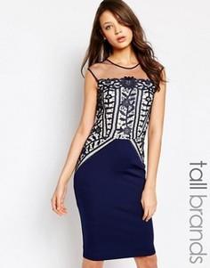 Платье-футляр с кружевной отделкой Little Mistress Tall Premium - Темно-синий