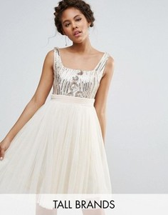 Тюлевое платье для выпускного с пайетками на топе Little Mistress Tall - Кремовый