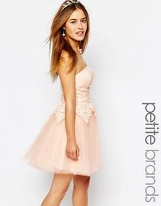 Платье для выпускного с кружевным лифом-бандо Chi Chi London Petite - Розовый