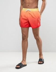 Шорты для плавания с эффектом деграде Wetts - Оранжевый