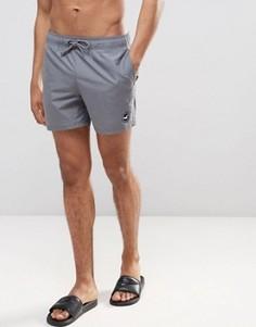 Серые шорты для плавания с логотипом в виде чайки Hollister - Серый