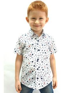 Рубашки Darling Kids