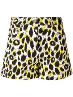 шорты с леопардовым узором Moschino