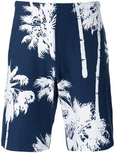 спортивные шорты Palm Tree Champion