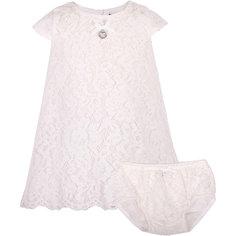 Комплект: платье и шорты для девочки Gulliver