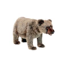 Медвежонок Гризли, идущий, 60 см, Hansa