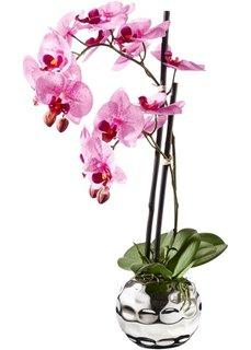 Декоративная орхидея (ярко-розовый/серебристый) Bonprix