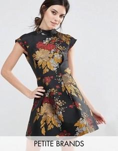 Платье мини для выпускного c высоким воротом из жаккарда Chi Chi London Petite - Мульти