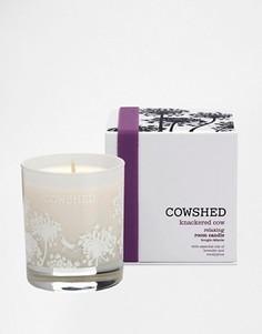 Комнатная свеча для релаксации Cowshed Knackered Cow - Бесцветный