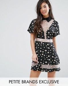 Короткое приталенное платье с принтом Fashion Union Petite - Мульти