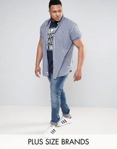 Комплект из синей футболки и рубашки Duke PLUS - Синий