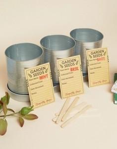 Подарочный набор для выращивания кухонных трав Temerity Jones - Мульти