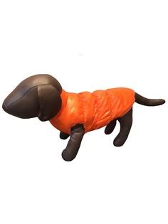Жилеты для животных Pets Fashion