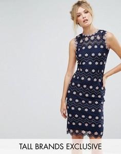 Платье-футляр с контрастным цветочным кружевом Paper Dolls Tall - Темно-синий