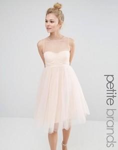 Платье для выпускного из тюля с вырезом сердечком Boohoo Petite - Розовый
