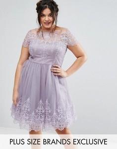 Платье миди с кружевным лифом и тюлевой юбкой Chi Chi London Plus - Фиолетовый