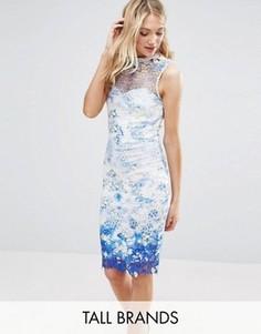 Кружевное платье-футляр с принтом и высокой горловиной Paper Dolls Tall - Мульти