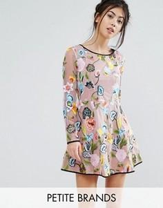 Короткое приталенное платье с длинными рукавами и вышивкой True Decadence Petite - Мульти