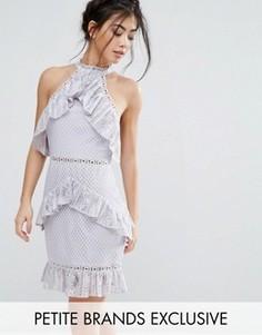 Кружевное платье мини без рукавов с оборками True Decadence Petite - Фиолетовый