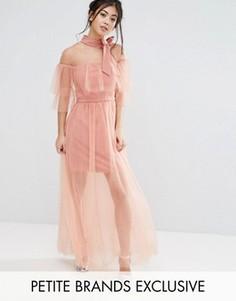 Плиссированное сетчатое платье с завязкой на горловине True Decadence Petite - Розовый