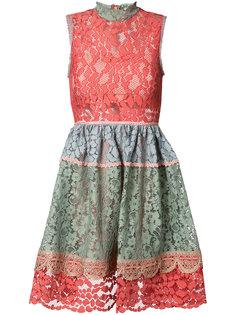 приталенное кружевное платье Alexis