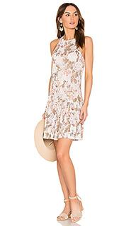 Платье в цветочек penelope - Rebecca Taylor