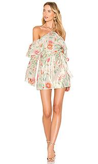Платье lucille - RACHEL ZOE