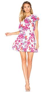 Thea dress - devlin
