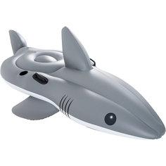 Надувная акула для катания верхом, Bestway