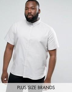 Базовая оксфордская рубашка D-Struct PLUS - Серый
