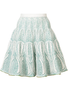embroidered flared skirt Sophie Theallet