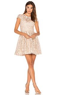 Платье gracia - Alice + Olivia